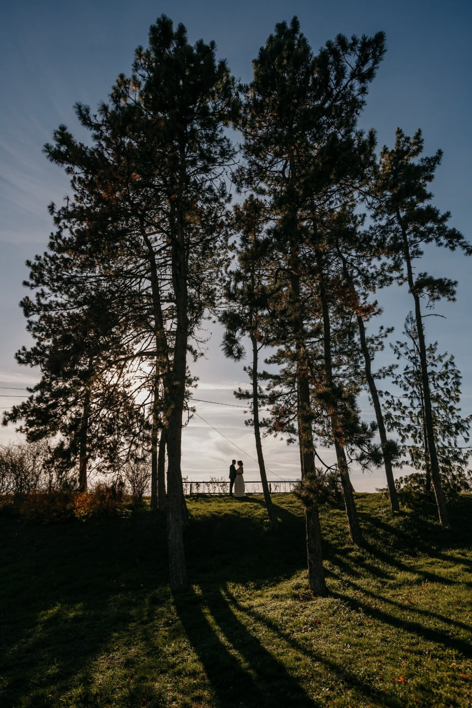 romantic, meeting, hilltop, man, standing, woman, dawn, landscape, forest, wood