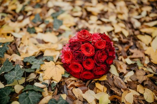 hojas amarillas, Otoño, hiedra, rojo, rosas, ramo de la, regalos, color de rosa, hoja, amor
