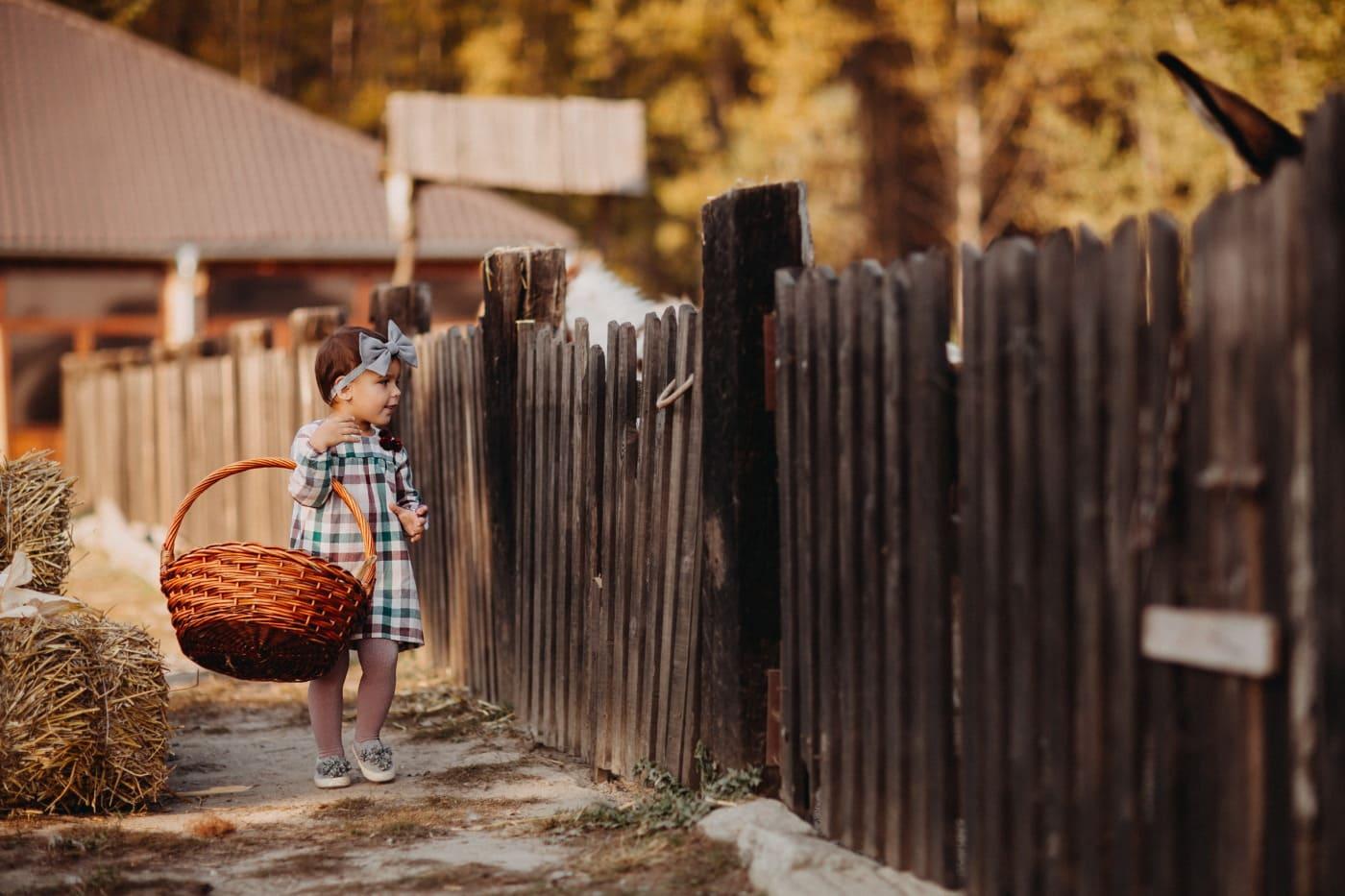 детство, деревня, ребенок, игривый, Невинность, наслаждаясь, забор, дерево, на открытом воздухе, забор