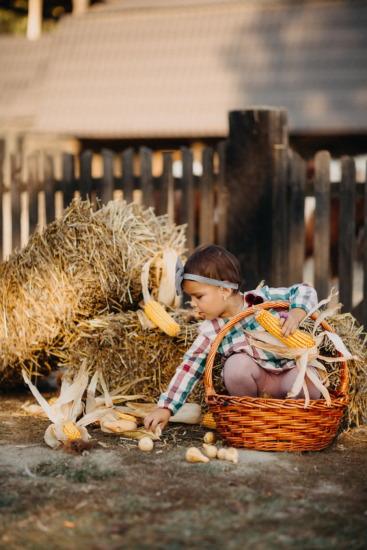 農家, 子供の頃, 子, 納屋, 陽気です, 籐のバスケット, 遊び心のあります。, 幸福, 干し草, 枝編み細工品