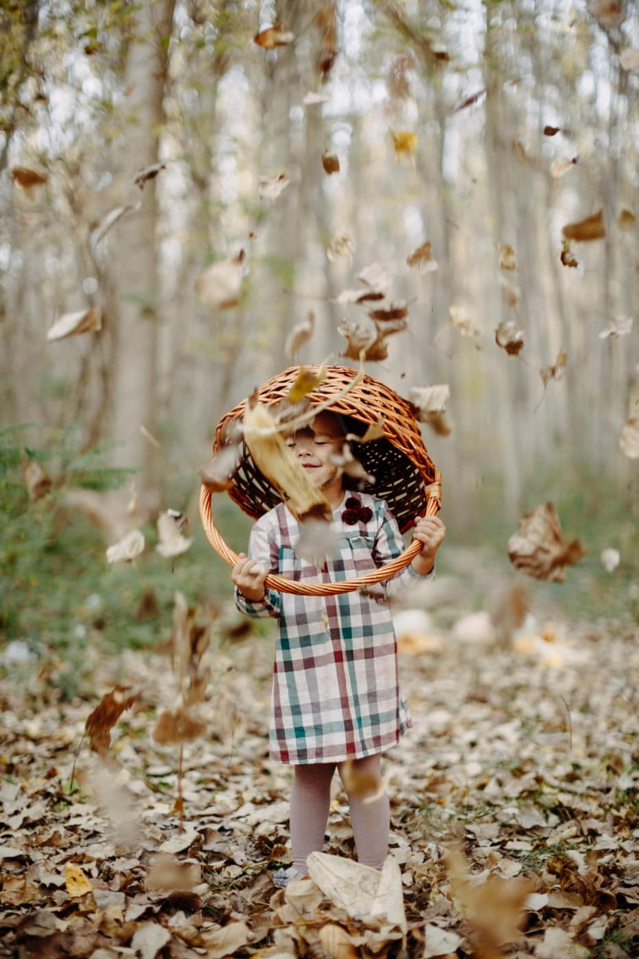 autumn season, yellowish brown, leaves, child, forest, wicker basket, happiness, enjoyment, fun, nature