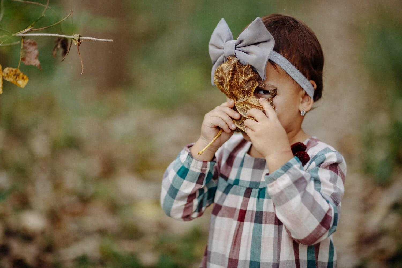 Mädchen, liebenswert, Kleinkind, untergeordnete, gelbe Blätter, Gesicht, lustig, Porträt, Freude, Natur