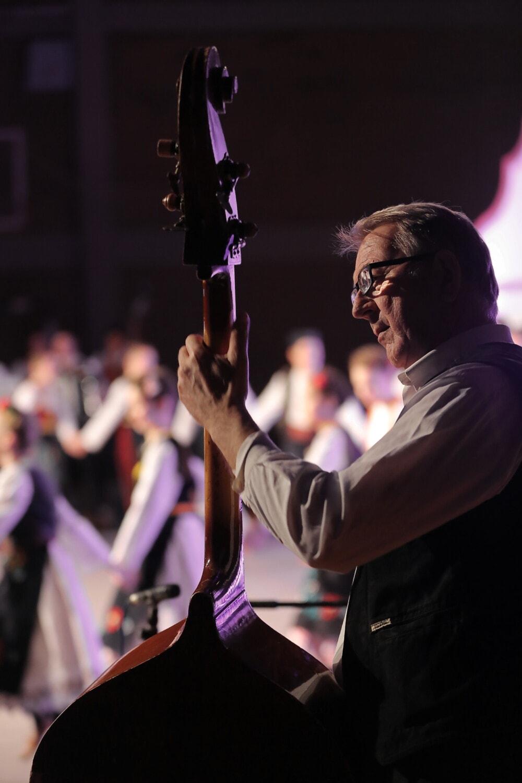 Musiker, Theater, Orchester, Mann, Musik, Performance, Performer, Person, Sänger, Konzert