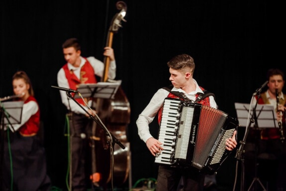 accordion, theater, performance, orchestra, performer, concert, music, instrument, musician, people