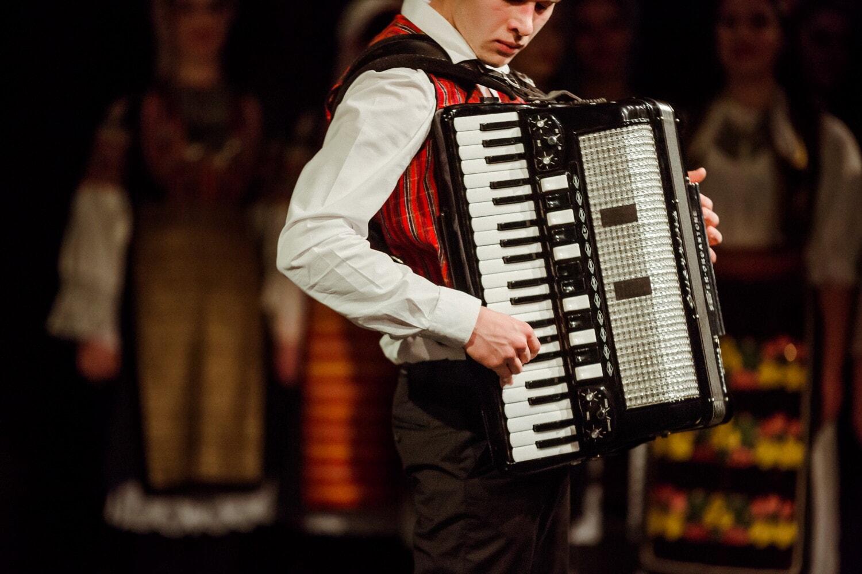 accordéon, musicien, musique, gens, concert, performances, homme, Portrait, Théâtre, Théâtre