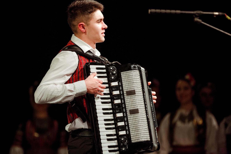 stehende, Mann, Wettbewerb, Musiker, Akkordeon, singen, Unterhaltung, Performance, Musik, Sänger
