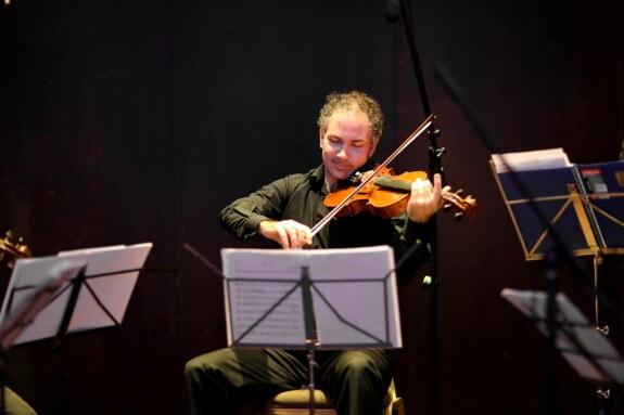 umjetnik, glazba, akustično, violina, orkestar, performanse, koncert, instrument, glazbenik, viola