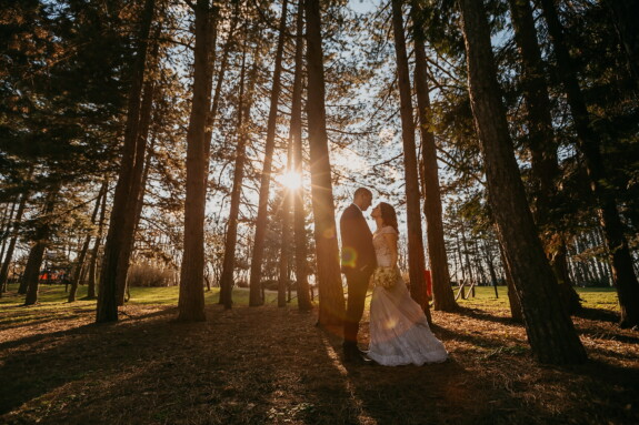 sunset, bride, sunrise, romantic, groom, just married, forest, shadow, backlight, park