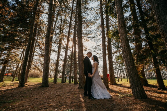kiss, forest, backlight, newlyweds, park, bride, girl, wood, wedding, tree