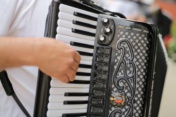 musician, accordion, close-up, music, instrument, sound, classic, electronics, indoors, equipment