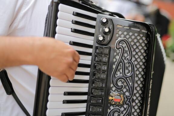 Musiker, Akkordeon, aus nächster Nähe, Musik, Instrument, Klang, Klassiker, Elektronik, drinnen, Ausrüstung