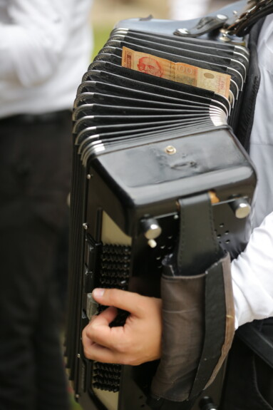 accordion, music, cash, money, musician, retro, man, business, people, classic