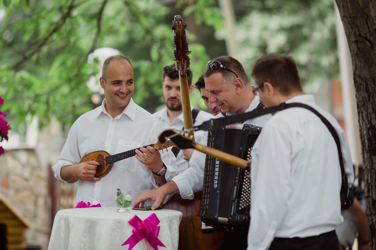 musician, ceremony, accordion, guitarist, orchestra, guitar, singer, smiling, folk, music