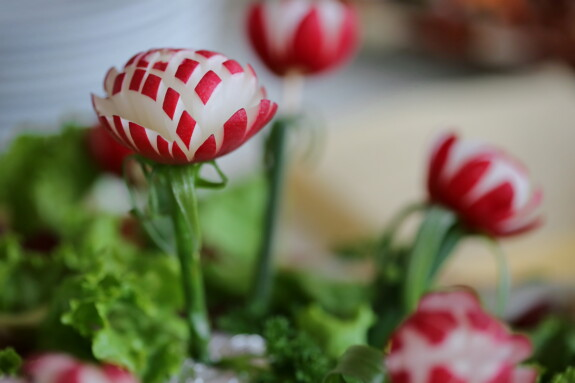 radish, salad bar, appetizer, appetite, salad, vegetable, leaf, food, bright, delicious