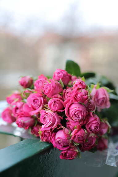 μπουκέτο, ρύθμιση, ροζ, διακόσμηση, φύλλο, τριαντάφυλλα, λουλούδι, φύση, τριαντάφυλλο, ανθισμένα