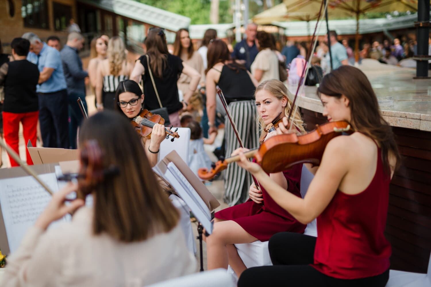 festival, carnival, street, viola, musician, violin, young woman, gorgeous, music, woman
