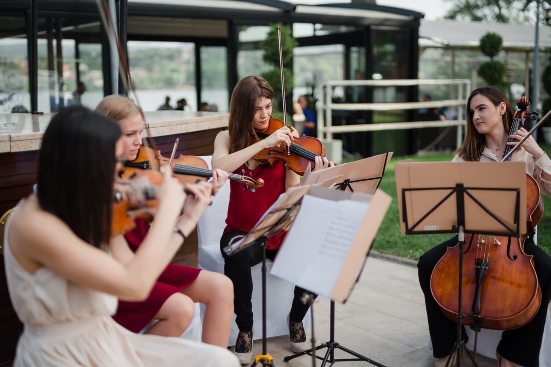 orchestra, violin, viola, women, musician, musical, music, classic, instrument, concert