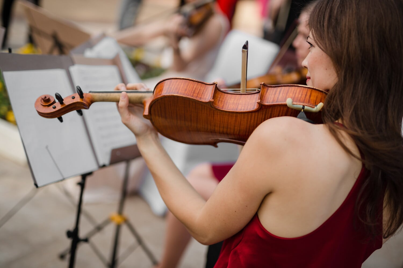 vue de côté, jeune femme, Portrait, magnifique, jouer, harmonie, violon, musique, musicien, instrument