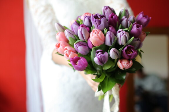 pinkish, bouquet, purplish, tulip, romance, flower, spring, pink, arrangement, love