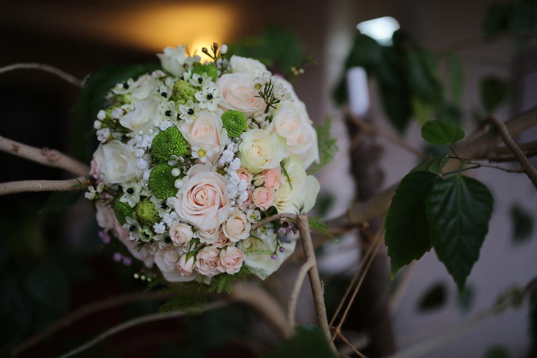 bouquet, decoration, tree, shadow, branch, flower, shrub, leaf, plant, rose