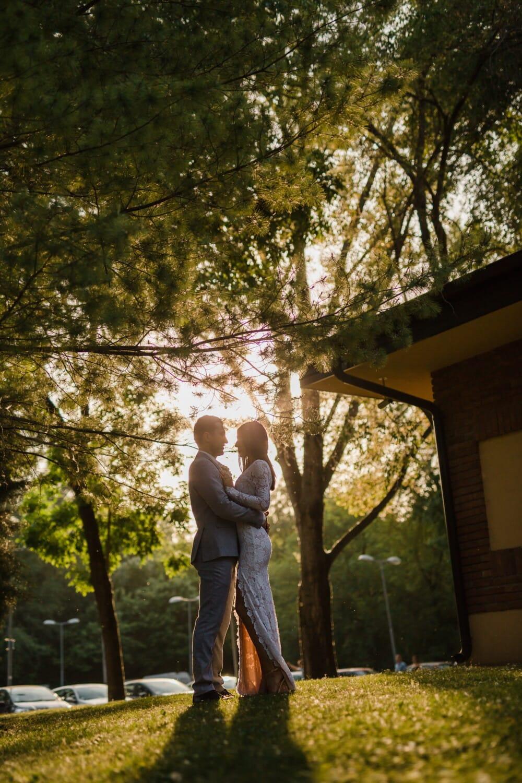 romantique, date d'amour, Parc de stationnement, parc, Dame, gentilhomme, jeune fille, arbre, gens, amour