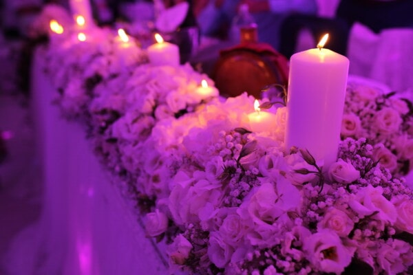 candles, aromatic, decoration, flower, candle, pink, flame, candlelight, celebration, light