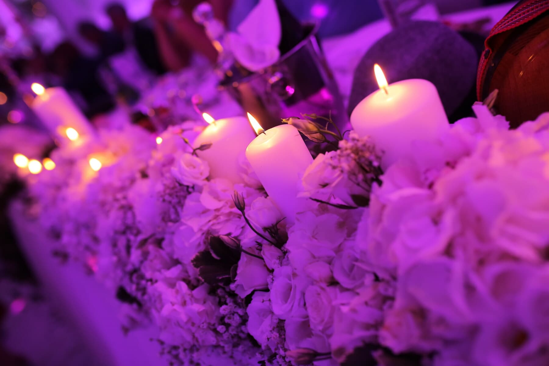 blanc, élégance, bougies, Rose, fleur, bougie, flamme, lumière, célébration, aux chandelles