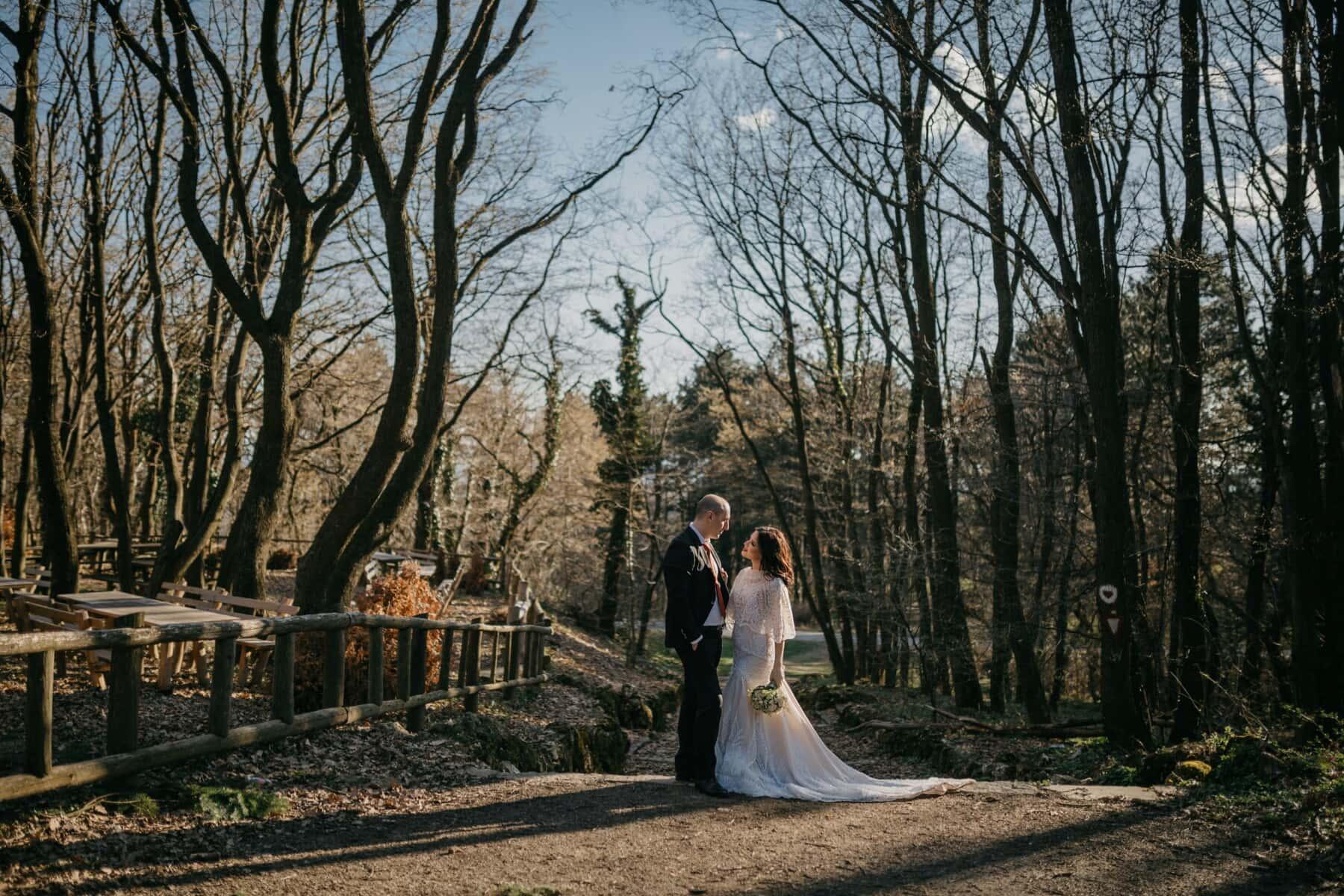 romantic, groom, love, bride, wedding, tree, wood, landscape, leaf, couple