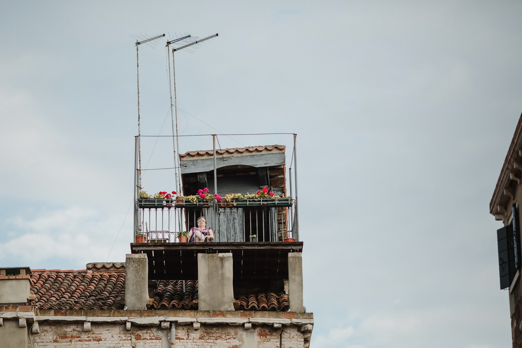 roof, grandmother, rooftop, garden, relaxation, architecture, city, building, street, urban