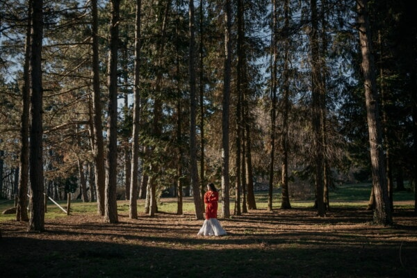forest, alone, young woman, red, coat, jacket, shadow, conifers, birch, landscape