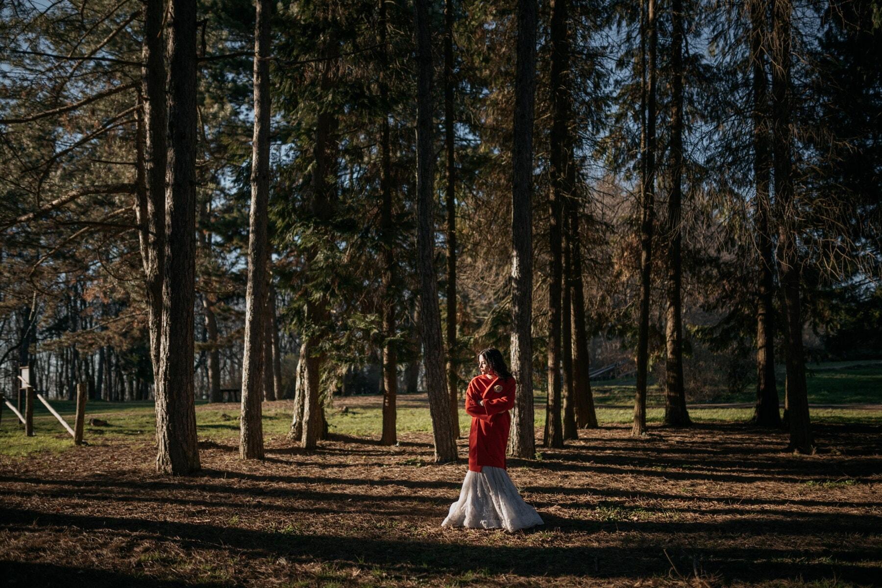 veste, rouge, forêt, seul, jeune femme, bois, nature, arbres, jeune fille, arbre
