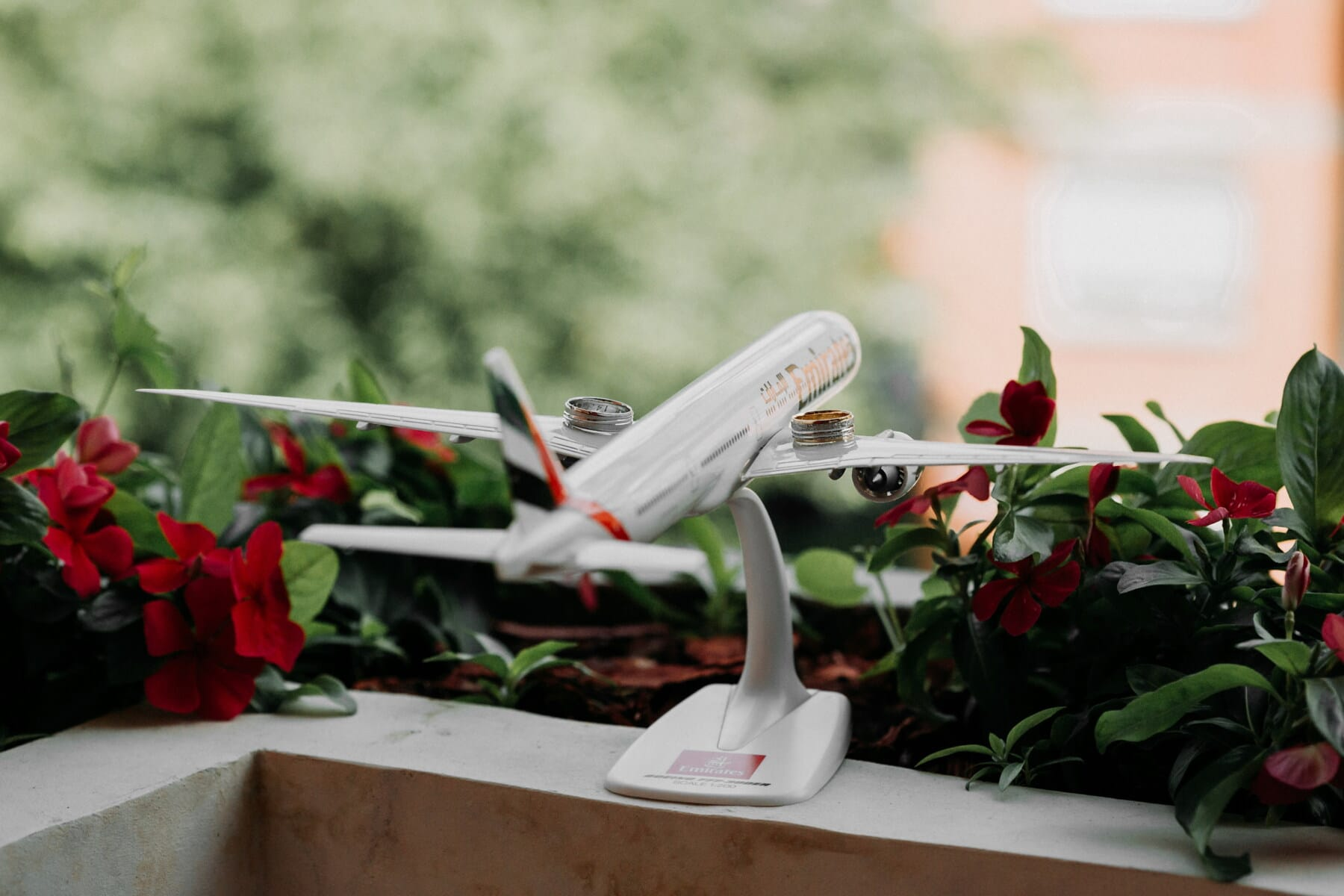 aeroplano, miniature, aircraft, toy, wedding ring, rings, flowerpot, balcony, flower garden, flower