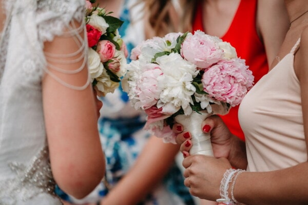 girls, wedding, girlfriend, women, wedding bouquet, bride, marriage, emotion, affection, tenderness