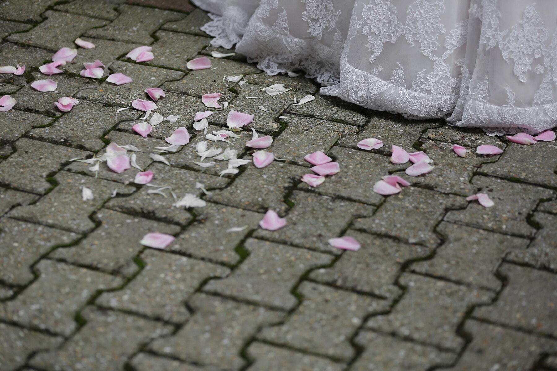 Blütenblätter, Rosa, Gehweg, Pflaster, Terrasse, Hochzeitskleid, Oberfläche, Textur, Urban, Straße