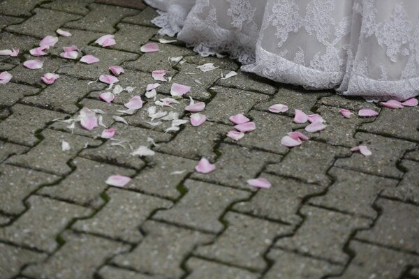 petals, pinkish, walkway, pavement, patio, wedding dress, surface, texture, urban, street