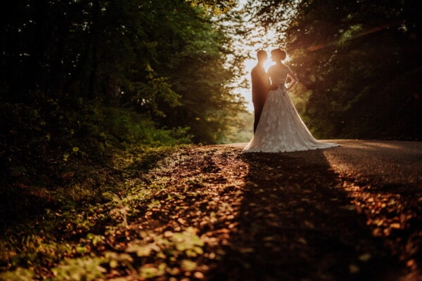 just married, bride, groom, forest road, sunset, structure, dawn, tree, landscape, light