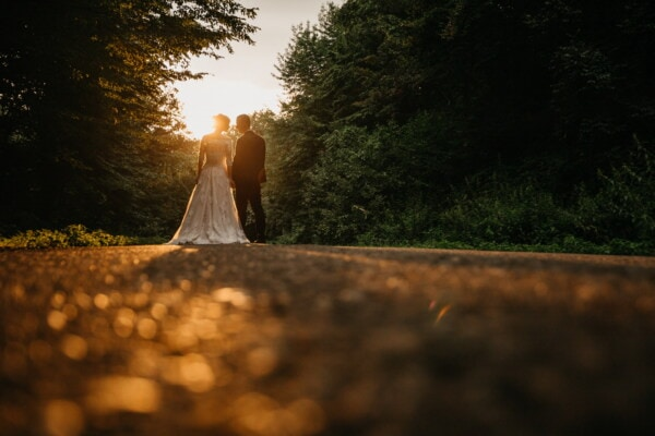sunset, road, newlyweds, girl, tree, light, wood, wedding, portrait, landscape