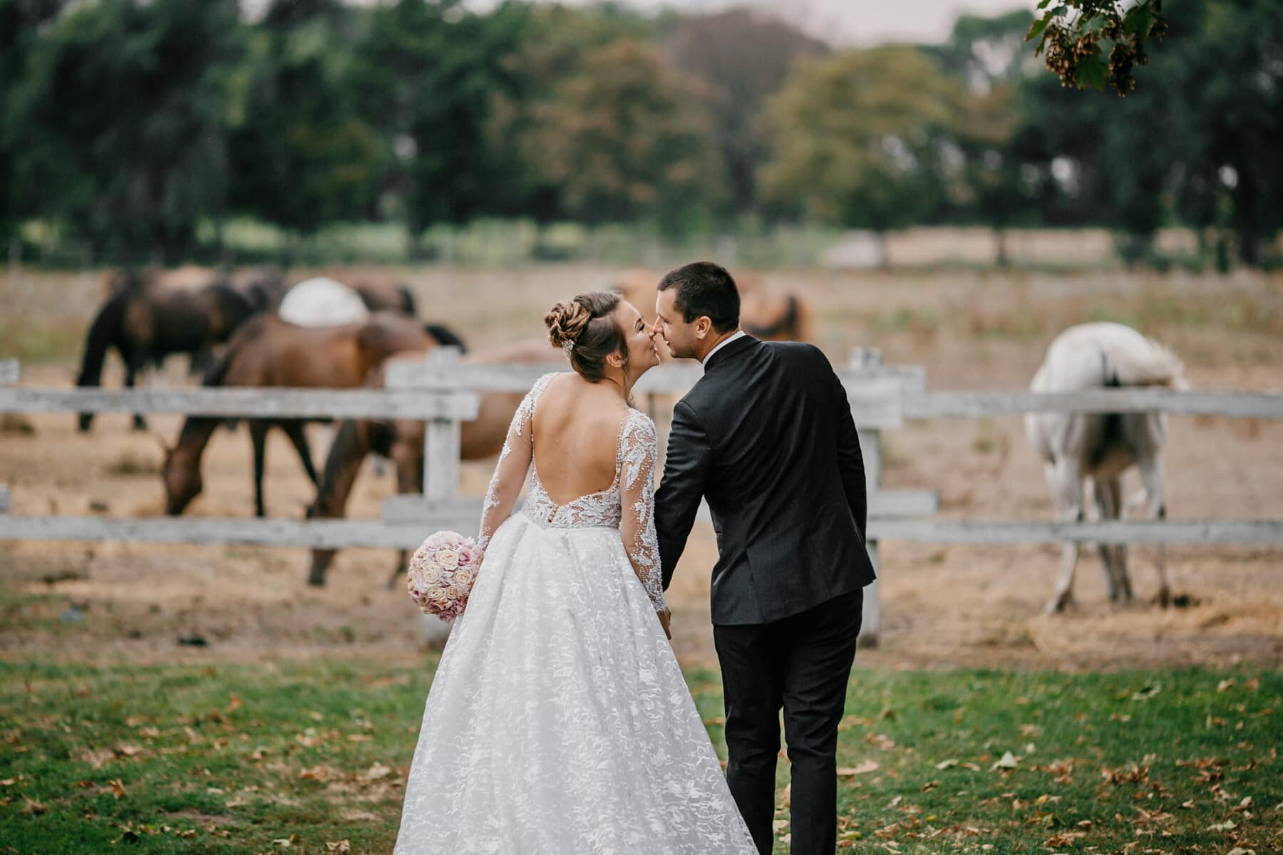 bride, just married, groom, countryside, village, horses, married, wedding, dress, couple