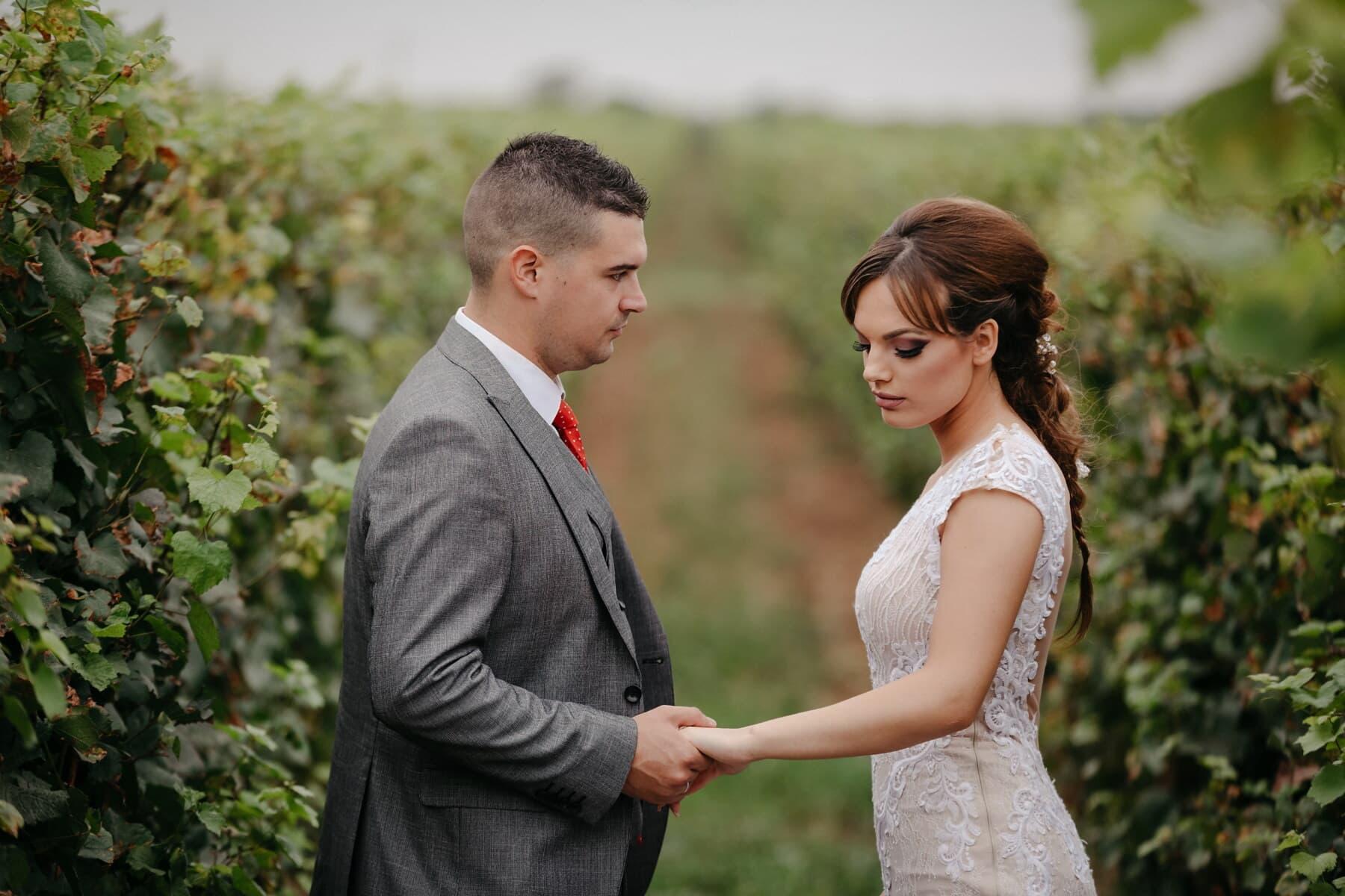 vineyard, love, meeting, love date, lover, romantic, affection, wedding, bride, groom