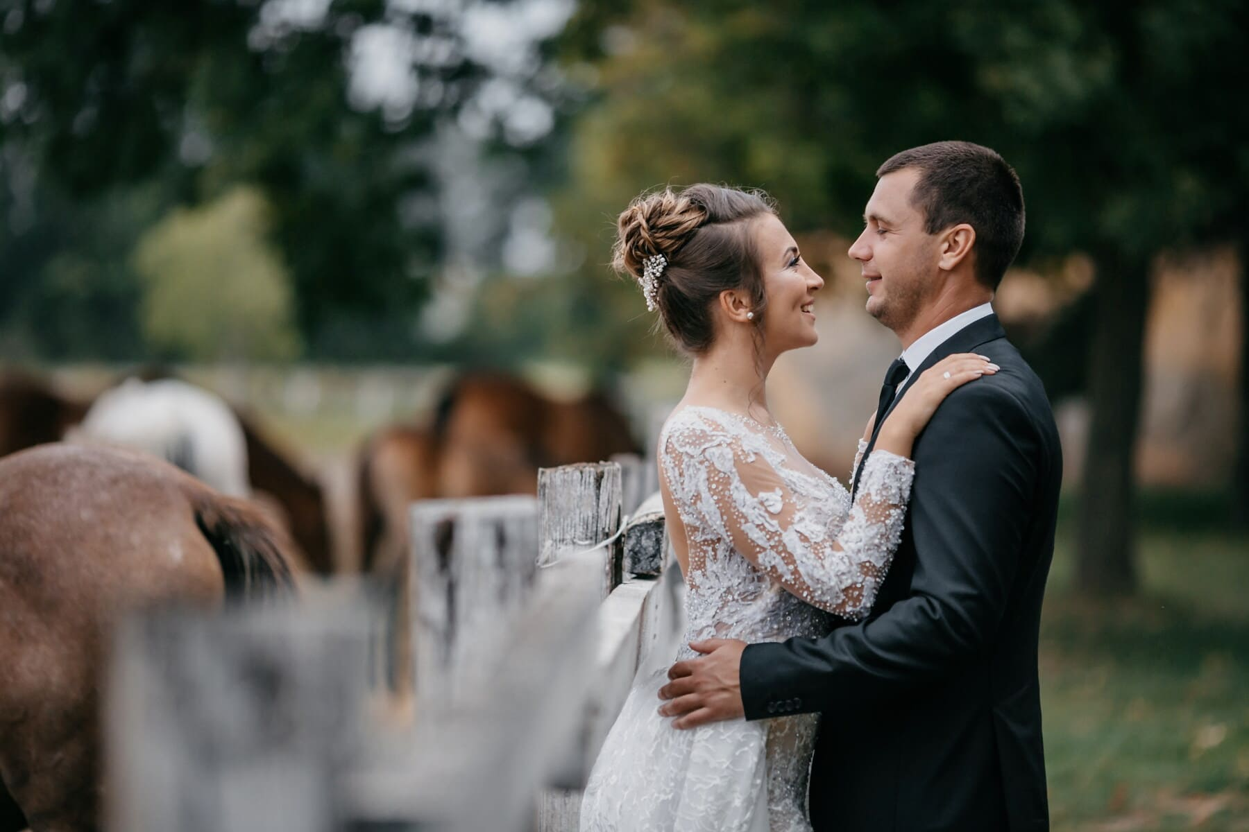 bride, village, groom, farmland, horses, love, couple, married, dress, marriage