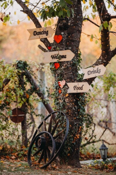 welcome, arrow, sign, love, romantic, garden, tree, outdoors, leaf, nature