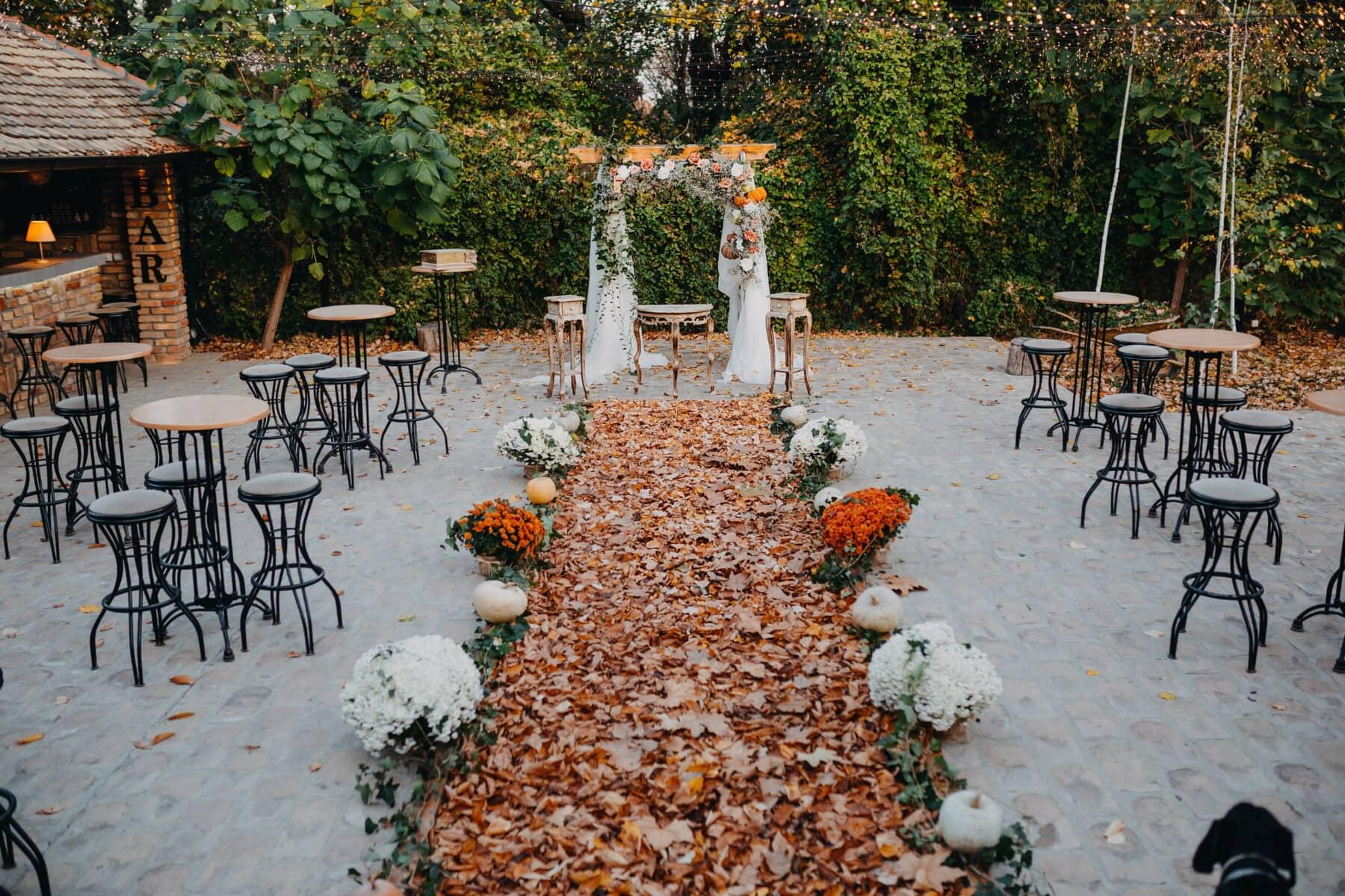 място за сватба, вътрешен двор, пешеходна пътека, кафене, Есен, есенния сезон, елегантна, мебели, дърво, седалка