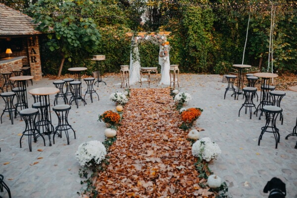 wedding venue, patio, walkway, cafeteria, autumn, autumn season, elegant, furniture, tree, seat