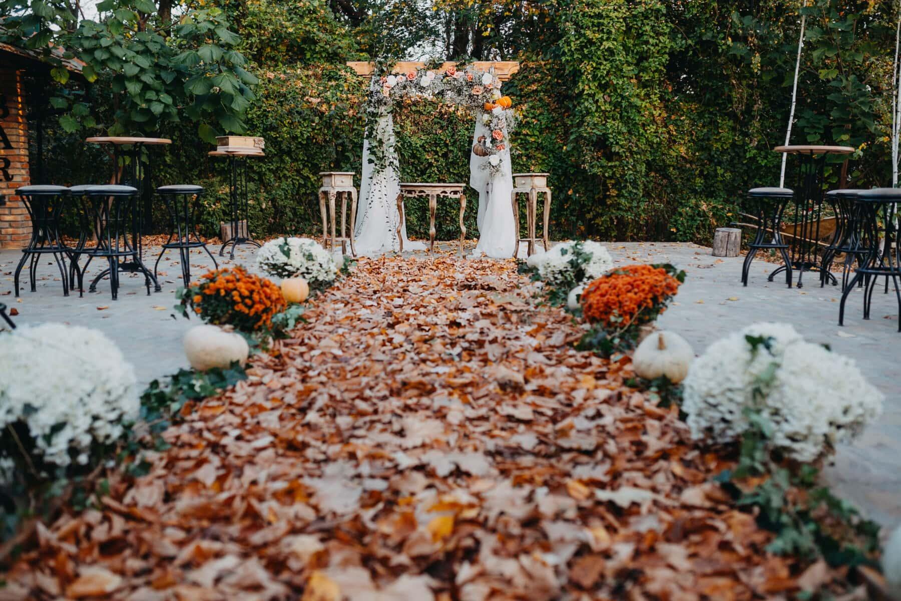 Hochzeitsort, Dekoration, Gehweg, gelbe Blätter, Herbst, Herbstsaison, Braun, Garten, Blatt, Blume