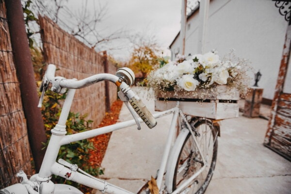 steering wheel, white, bicycle, wedding venue, decoration, flowers, box, bouquet, wheel, vehicle