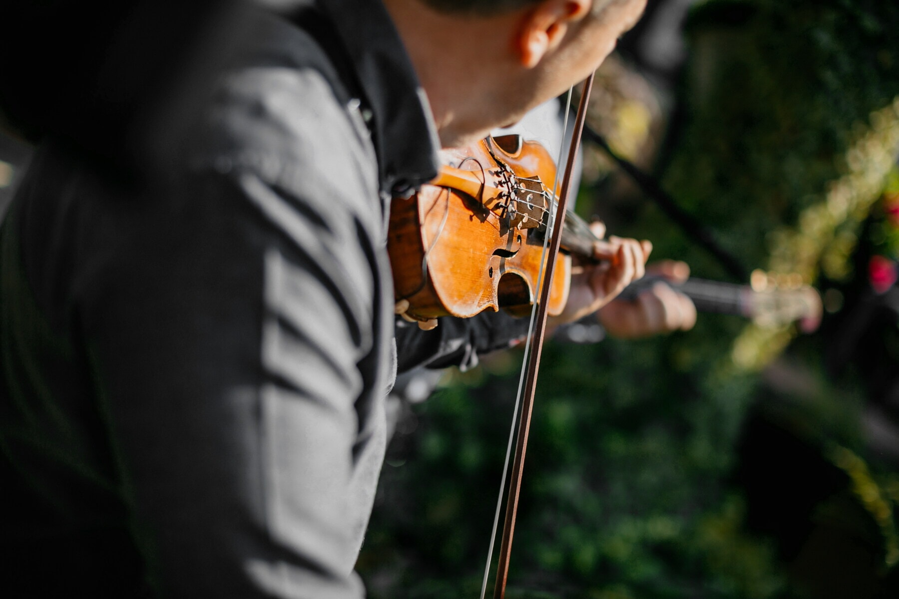violin, musician, music, street, man, entertainment, melody, concert, performance, festival