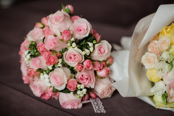 bouquet, greenish yellow, roses, pink, rose, romance, flower, elegant, leaf, petal