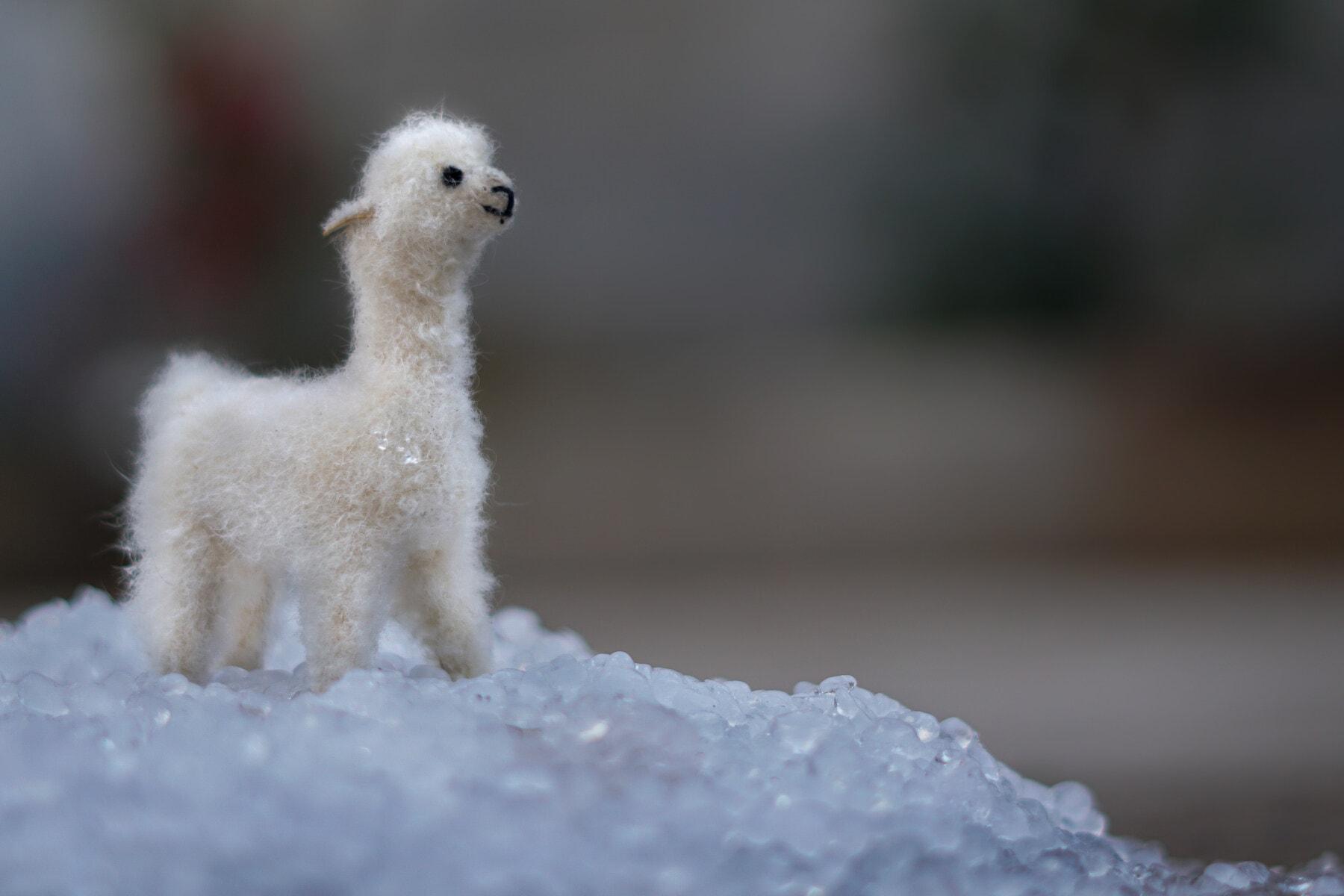 Winter, Spielzeug, Lama, Kälte, Schneeflocken, Eiskristall, Wetter, verwischen, im freien, Natur