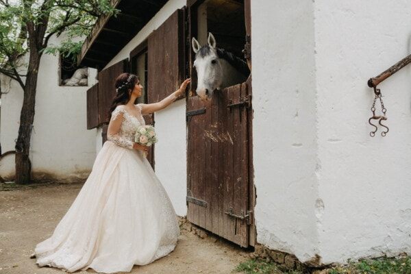 ranch, bride, farmhouse, barn, horse, wedding dress, village, dress, wedding, portrait