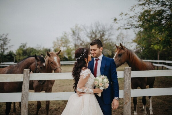 ranch, groom, just married, wedding dress, bride, livestock, wedding venue, farmland, horses, rural